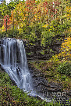 Dry Falls by Linda Blair