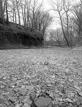 Dry River Bed by Phil Perkins