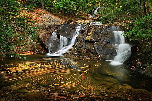 Dual Waterfall Swirl by Shelle Ettelson