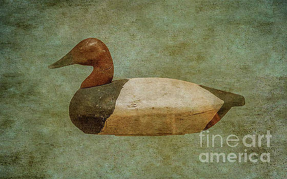 Duck Decoy Number One  by Randy Steele