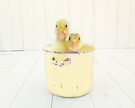 Duck Soup - Yellow Version by Amy Tyler