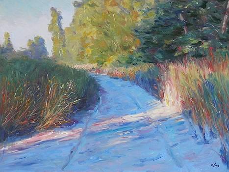 Dune Buggy Path by Michael Camp
