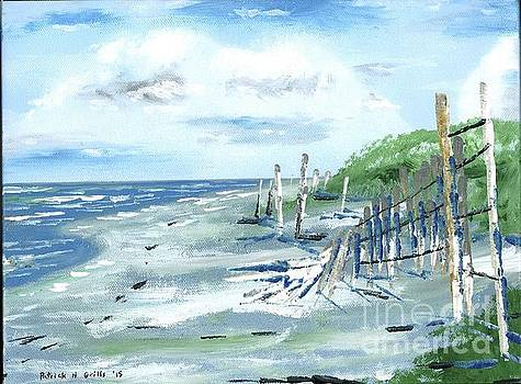 Dune Fences Isle Of Palms by Patrick Grills