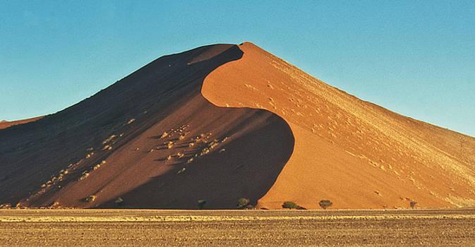 Dune Shadow by Sandy Schepis