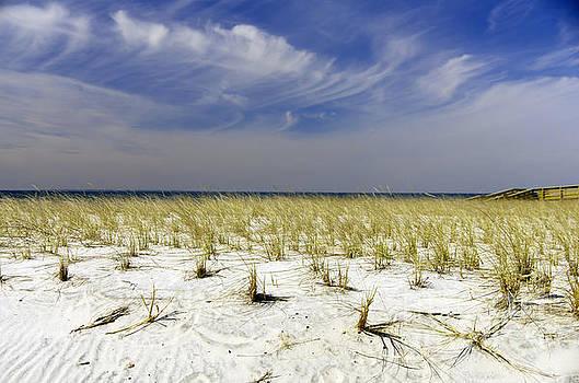 Dune Sky No.1 by Scott Evers