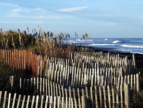 Dunes by Valeria Donaldson