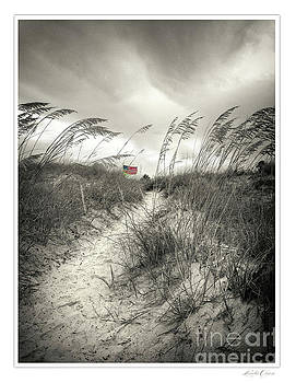 Dunes Walk Sepia by Linda Olsen