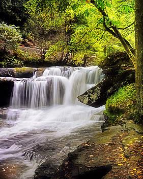 Dunlap Falls by Lj Lambert