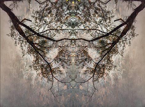 Duplicity by Spokenin RED