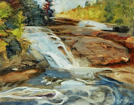 Dupont Forest Triple Falls by Lisa Blackshear