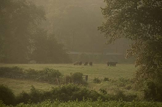 Dusk on the Farm by Chris Burke