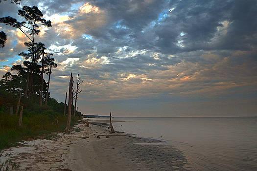 Judy Hall-Folde - Dusk on the Gulf