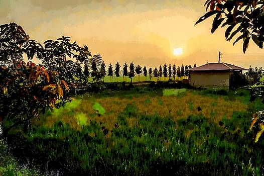 Dusk over the farm by Ashish Agarwal