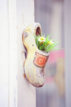Dutch Wooden Shoe Floral Decor by Jenny Rainbow