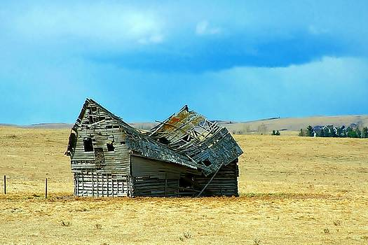 Dying Old Barn by Mario Brenes Simon