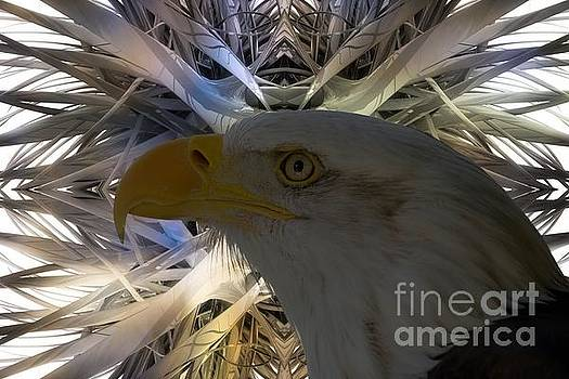 Eagle Abstract by Sherman Perry