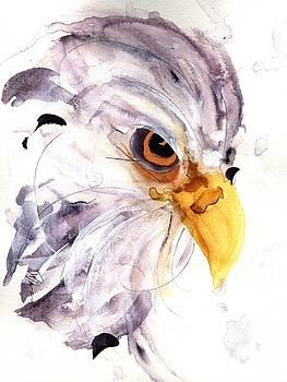 Eagle by Dawn Derman