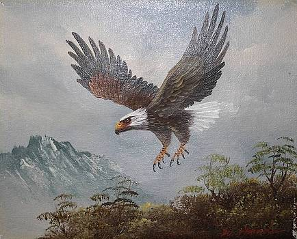 Bill Hubbard - Eagle in Flight
