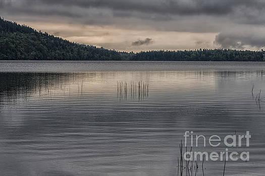 Patricia Hofmeester - Eagle Lake, Acadia NP, Maine