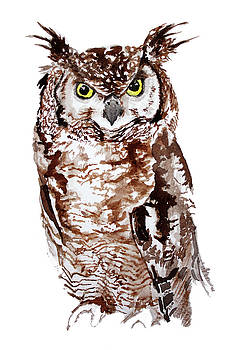 Eagle Owl Watercolor Print by Daniela Safarikova