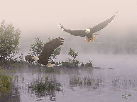 Eagles at Dawn by IM Spadecaller