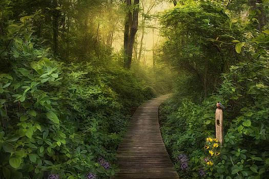 Early Bird by Robin-lee Vieira