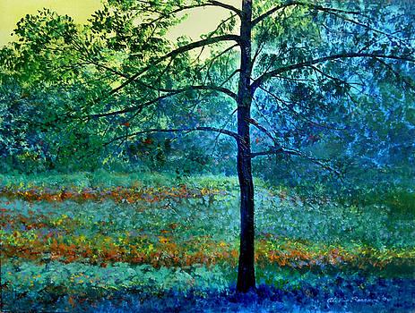 Early Morning by Alexis Baranek