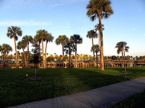 Early Morning in Daytona Beach by Chris Mercer