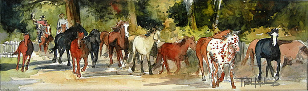 Early Morning Roundup by Trish McKinney