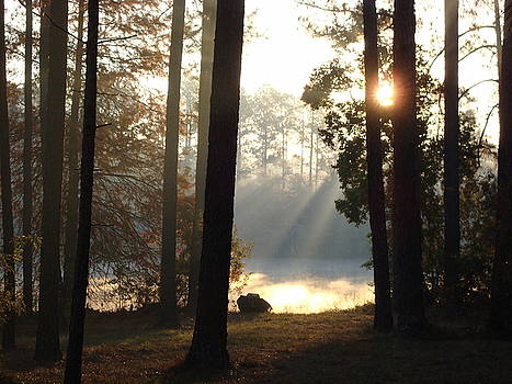 Early morning Sun Rays on the lake by Cindy Hudson