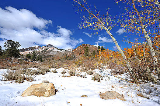 Early Snow in Bishop Creek by Dung Ma