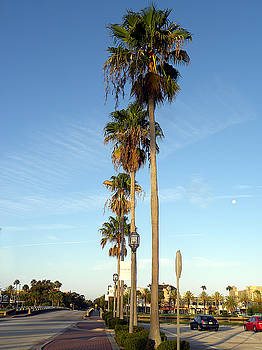 Early Sunday Morning in Daytona Beach  by Chris Mercer