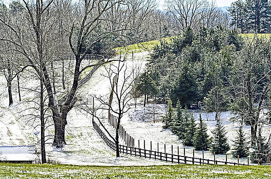 Early Winter Pasture by Susan Leggett