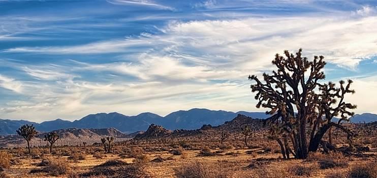 Earthsong - Melody of the Mojave Desert by Chrystyne Novack