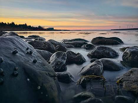 East Coast Sunset 2 by Christine Sharp