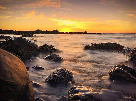 East Coast Sunset 3 by Christine Sharp