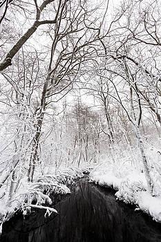 East End Winter Storm Jonas by Ryan Moore