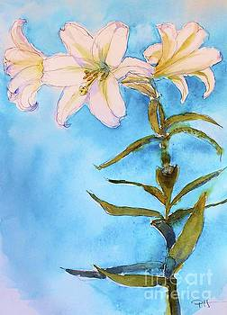 Easter Lily by Patricia Henderson
