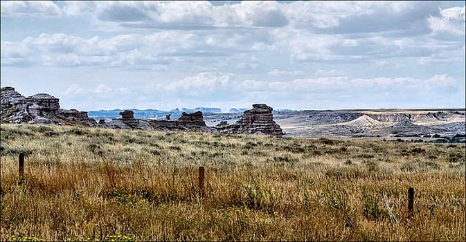 Eastern Wyoming Sky by Donald J Gray