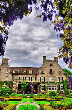 Emily Stauring - Eastman Wisteria
