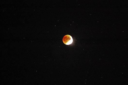 Eclipse View From Tiverton  by Rachel E Moniz