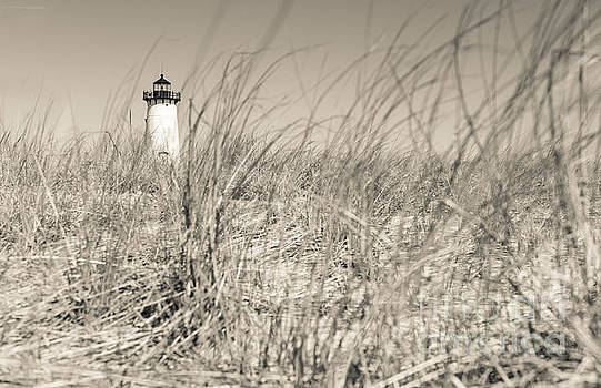 Edgartown Harbor Light by David Rucker