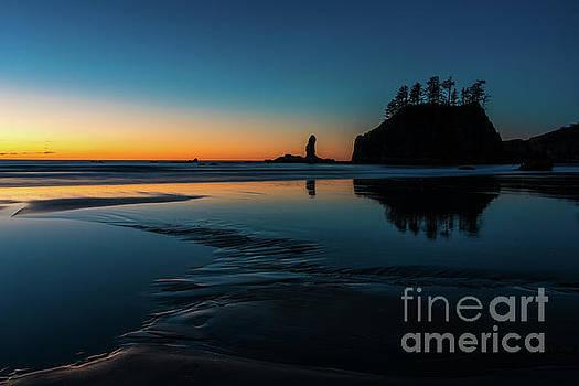 Edges of Light Along the Beach by Mike Reid