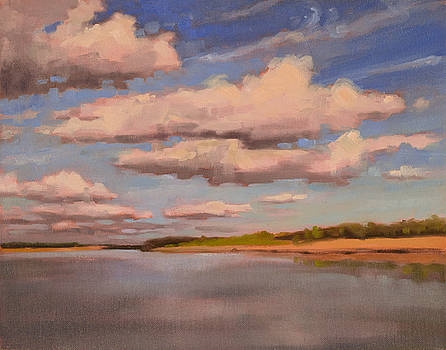 Edisto Clouds by Todd Baxter