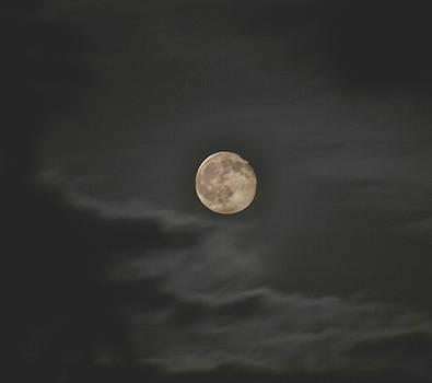Eerie Moon by Sue Houston