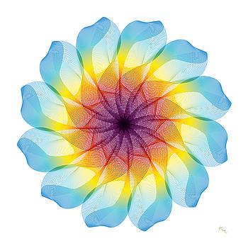 Efflorescence by Rabi Khan