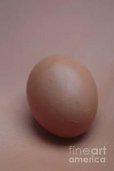 Edward Fielding - Egg