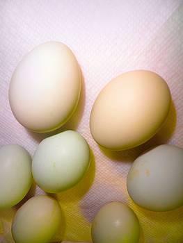 Egg Pastel by Tonie Cook