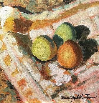 Eggs in a Blanket by Susan E Jones