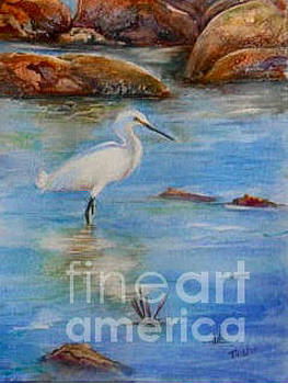 Egret at Malibu Beach by Patricia Pushaw